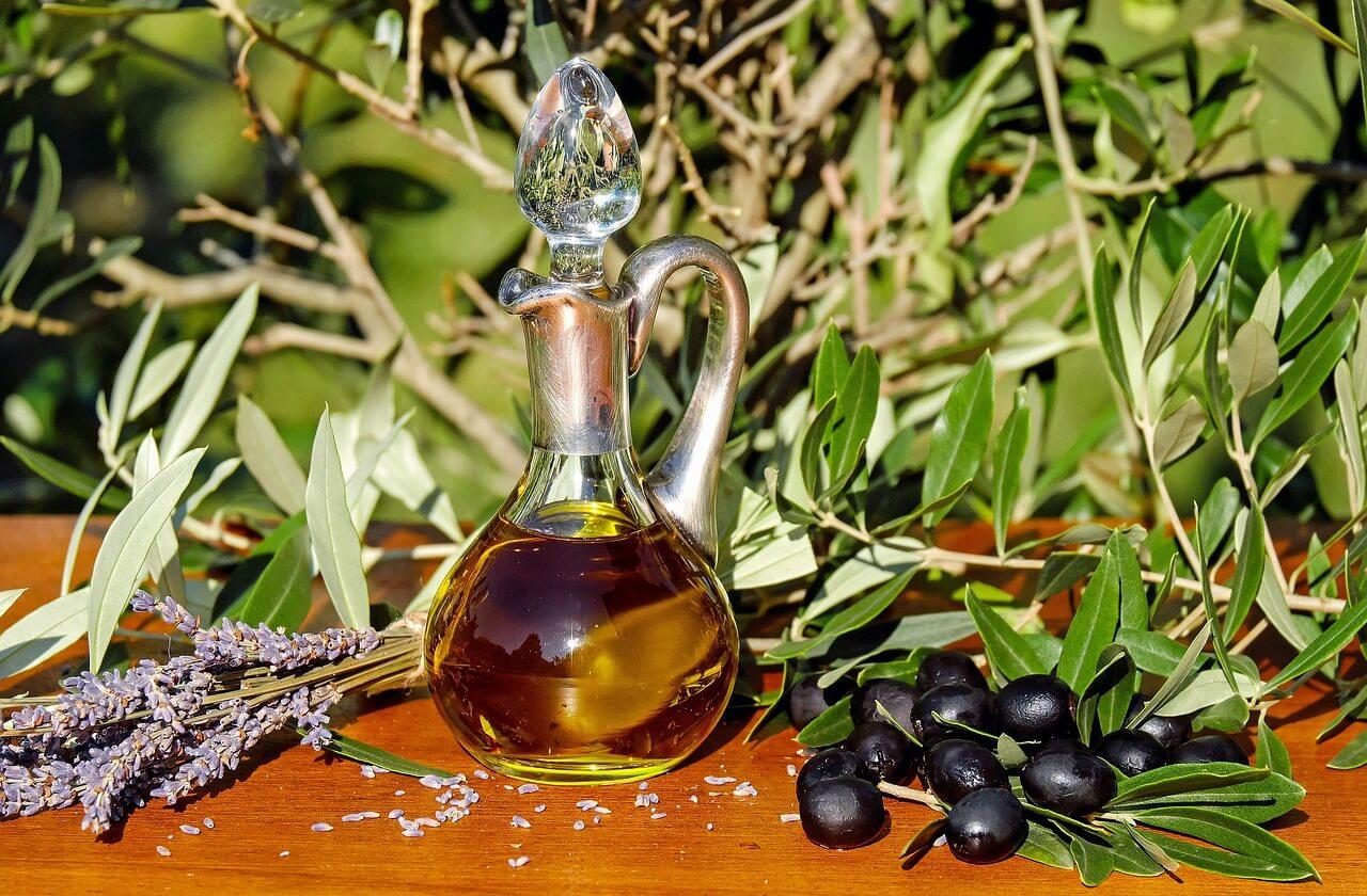 minyak zaitun dan buah zaitun