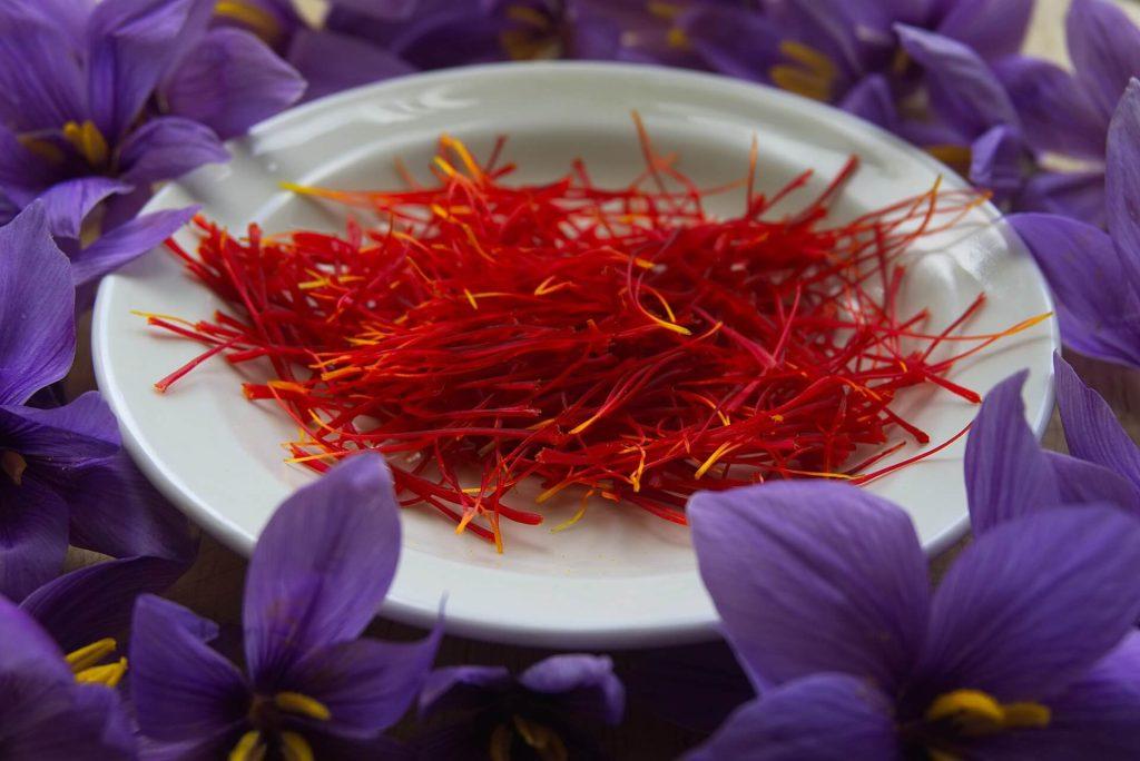khasiat saffron