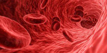 darah merah