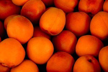 aprikot