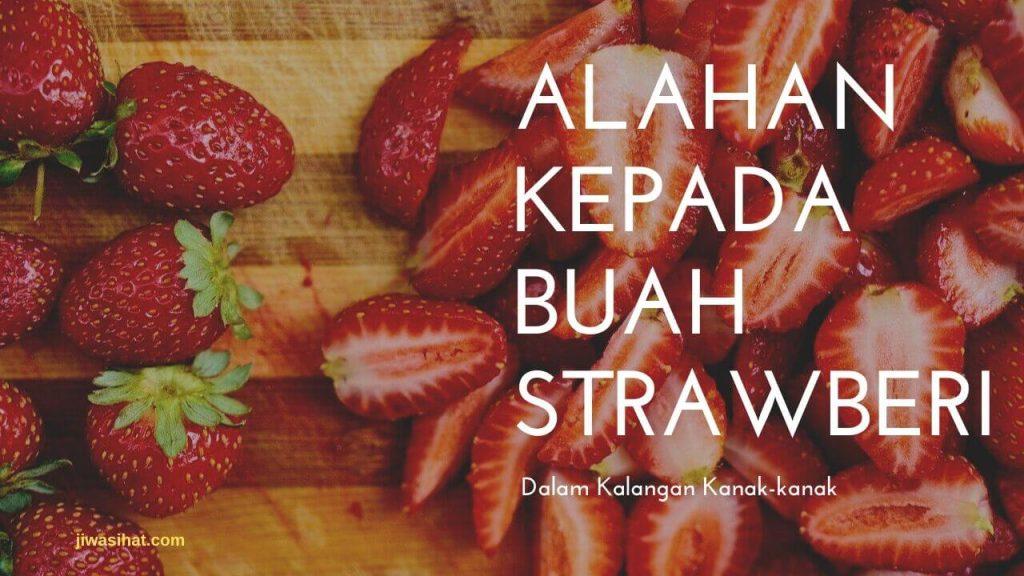 alahan kepada buah strawberi