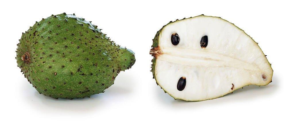 khasiat durian belanda
