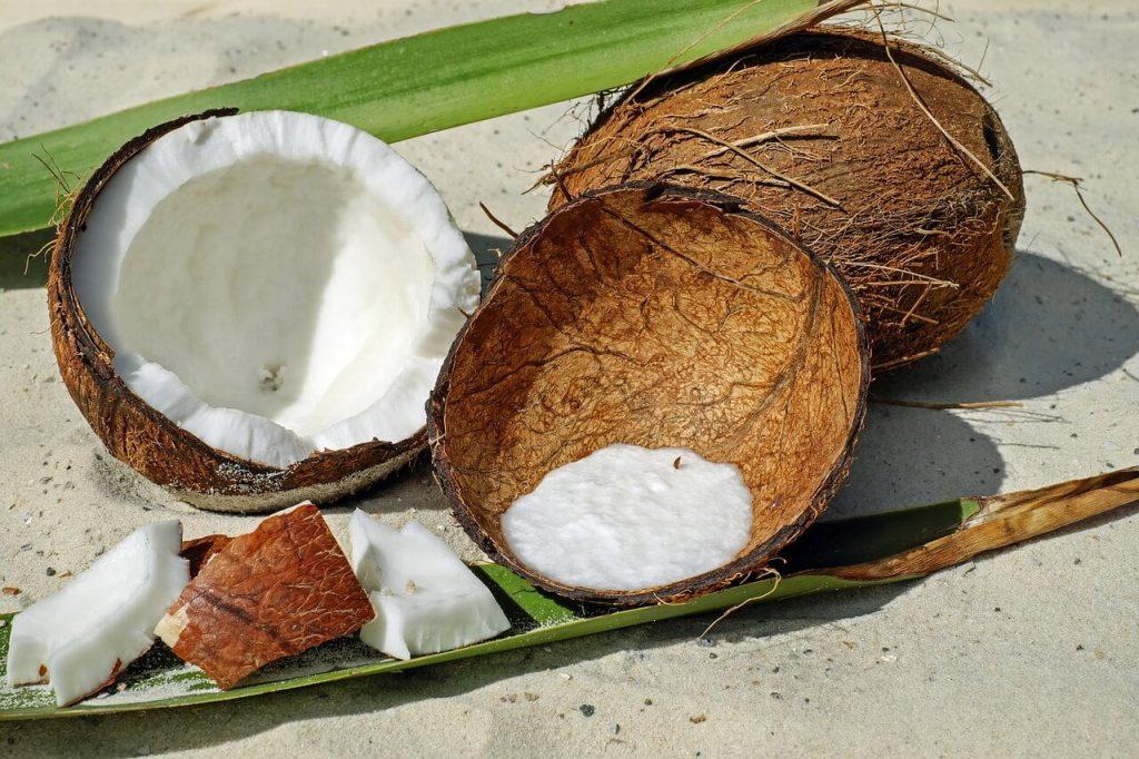 khasiat minyak kelapa dara
