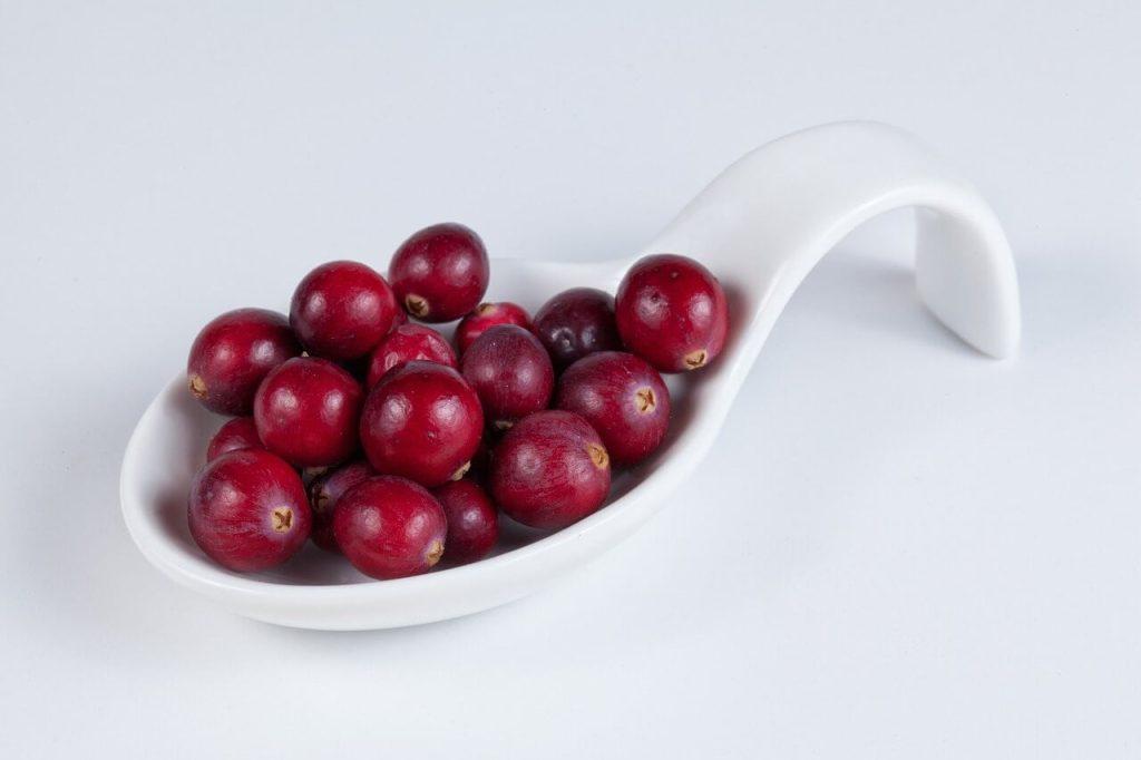 khasiat buah kranberi