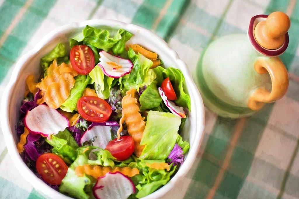 panduan asas diet vegan & diet vegetarian