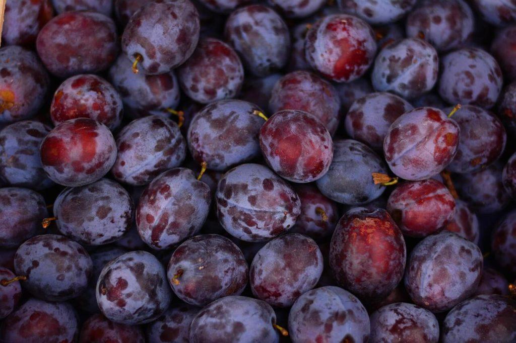 khasiat buah plum
