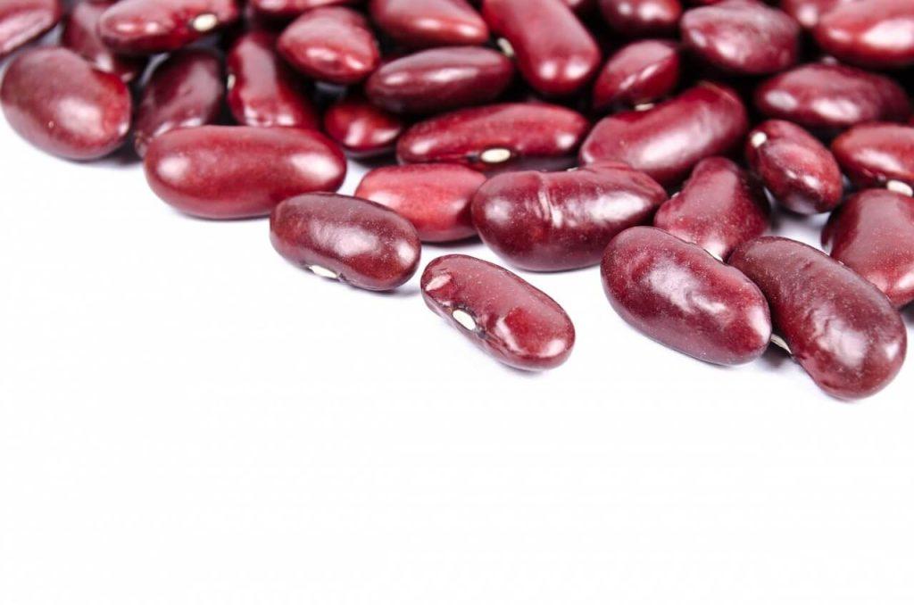khasiat kacang ginjal