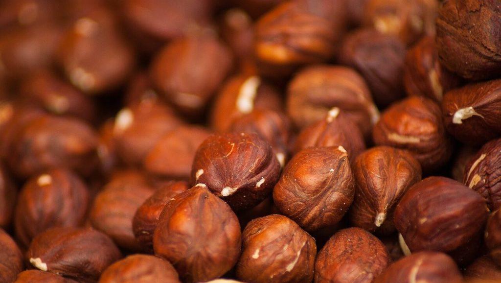 khasiat kacang hazel