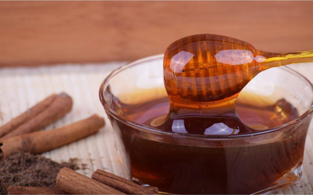 khasiat madu gelam