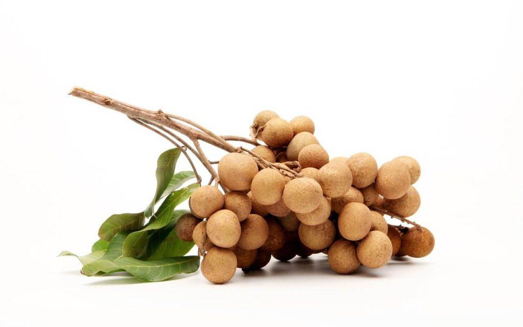 khasiat buah longan