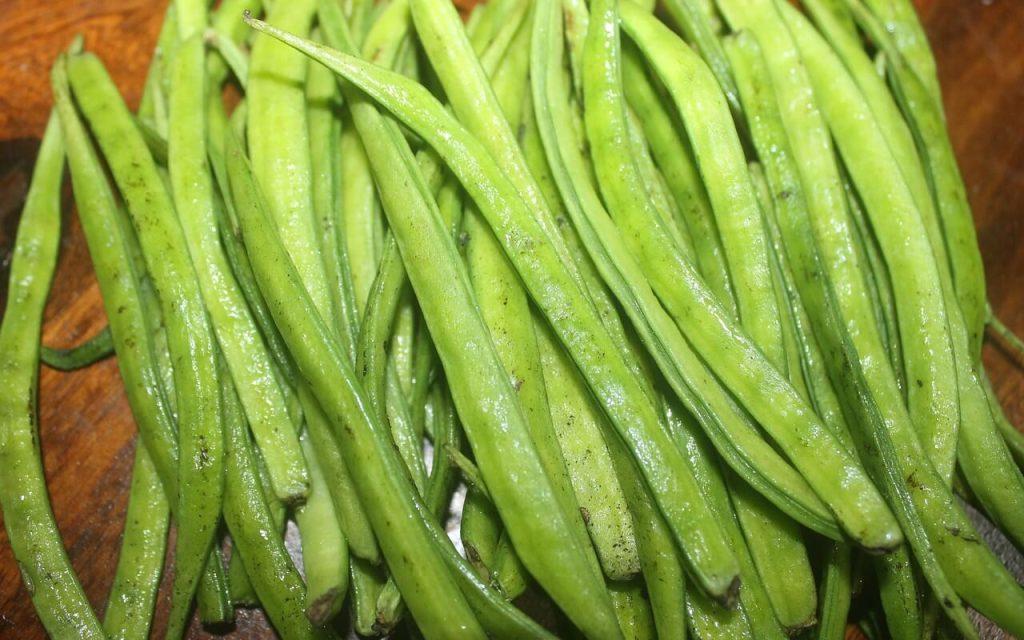 kacang guar-sumber kepada gam guar