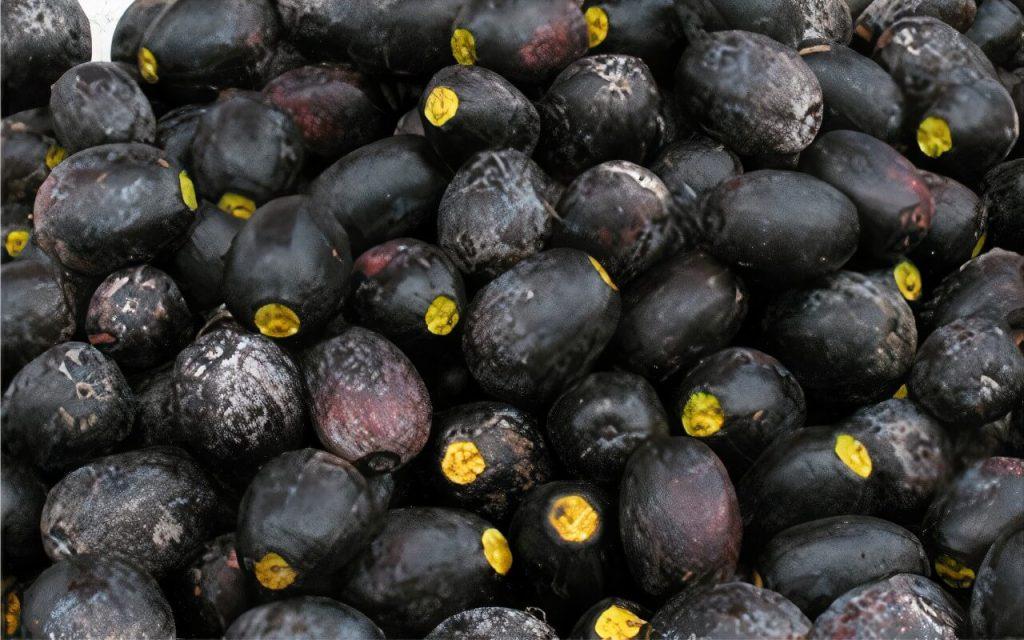 khasiat buah dabai